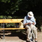 【悲報】 94歳の老人が若者をはね死なす