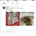 【速報】coopの水餃子にイモムシ混入 Part.2