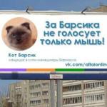 【ロシア】「市長選」でネコが圧勝、得票率9割 汚職まみれの政治に市民が嫌気