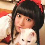 【悲報】悠木碧さん、猫に完全敗北