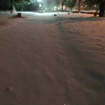 【訃報】鹿児島の機能、ガチで死ぬ