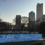 【花見】 横浜の公園半分以上を5日間「場所取り」…ネットで非難殺到して「謝罪」した大企業