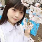 【画像】上坂すみれさん、花見をしてる姿が美しすぎる