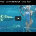 【閲覧注意】 AV女優、水中撮影中にサメの犠牲に