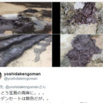 【1/6衝突 石油タンカー沈没】鹿児島県宝島に原油らしき物体が漂着、アジアで過去最悪の原油流出の恐れもあるが、なぜか報道は少ない模様