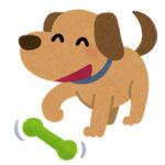 【朗報】首の長い犬が見つかる