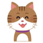 【動画】猫ちゃん 門にブチギレる
