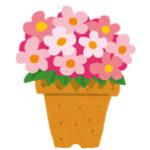 槇原敬之「一人一人違う種を持つ」「その花を咲かせることだけに一生懸命」